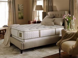 exposed-mattress-in-bedroom